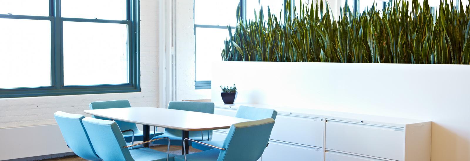 Indoor Plants-04