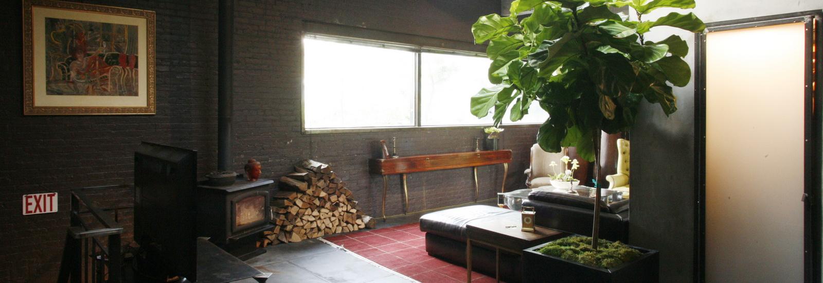 Indoor Plants-06